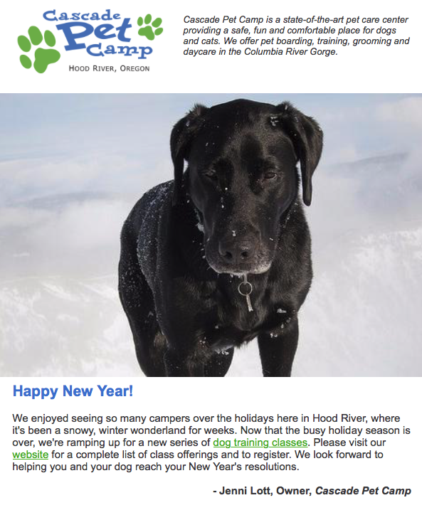 Cascade Pet Camp Newsletter